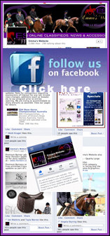 2013WebsiteFacebookBanner